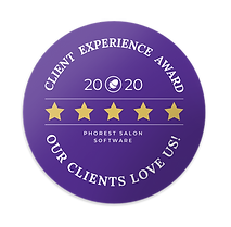 Winner of the 2020 Client Experience Award