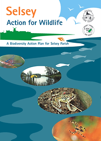 Selsey Biodivisty Action Plan