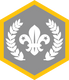 Chief Scout Silver Award
