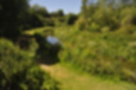Winterbourne Stream Fixed Point Images