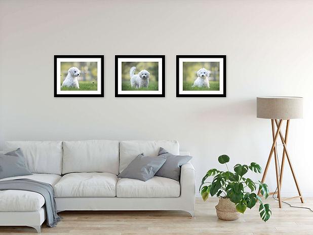 custom wallArt gallery