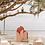 Thumbnail: Blush Retro Backdrop