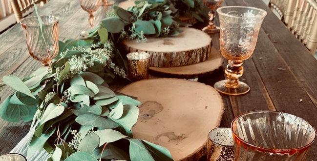 Rustic Log Slices