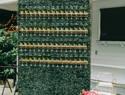 Mini Champagne Hedge Wall