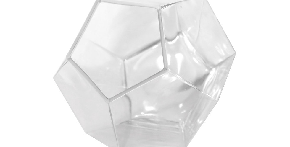 Large Geometric Glass Terrarium