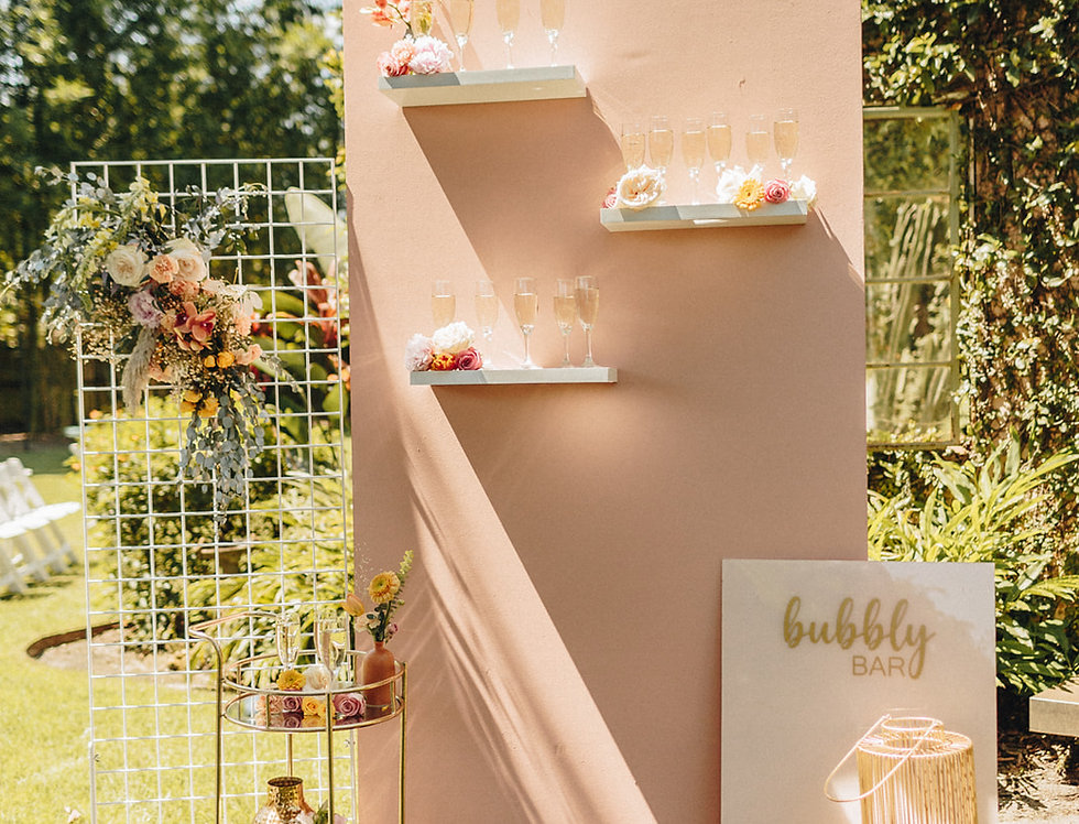 Blush Bubbly Wall