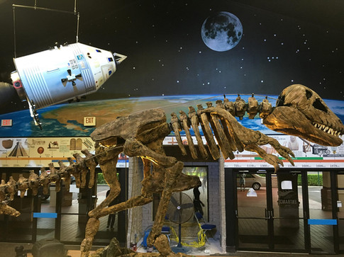 Power Surge Museum Display- Created a mechanical 19ft t-rex, 5ft space shuttle suspended from the ceiling and custom wallpaper.