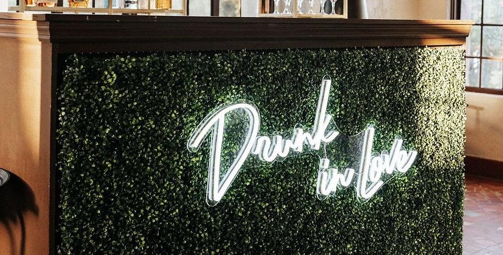 Drunk in Love Neon Sign + Black Overhang structure