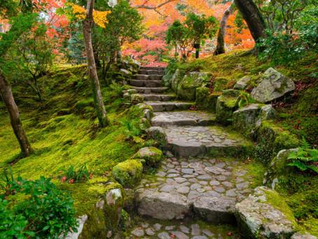 Tan Twan Eng - The Garden of Evening Mists