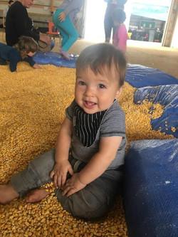 corn pit