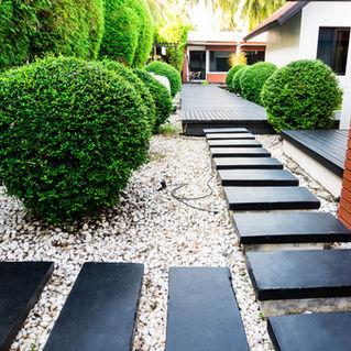 Lush & Modern Walkway