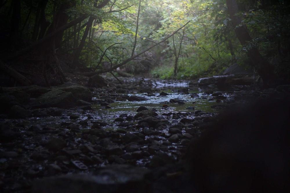 Stream in Sherwood Park