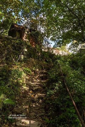 Coverack Bridges sun dappled steps Photograph and Fine Art Print