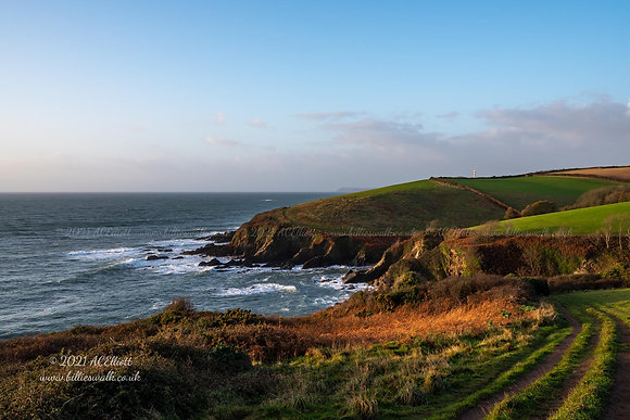 Gorgeous coastline viewed from Allday's Fields in Fowey photo and fine art print