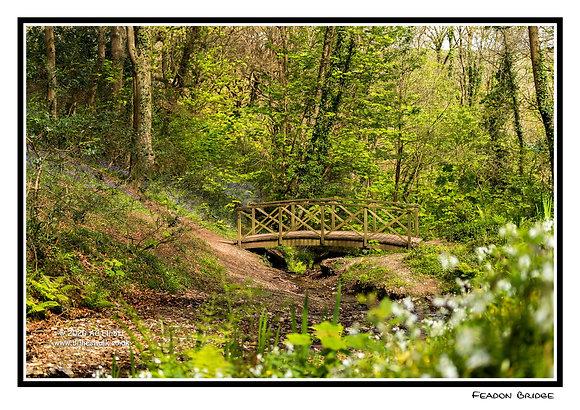Feadon Bridge spring woodland Greeting Card