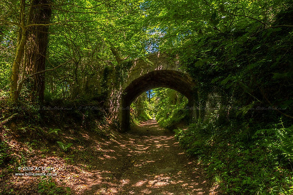 Luxulyan Valley Incline bridge