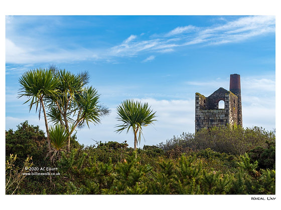 Wheal Uny Pumping Engine House