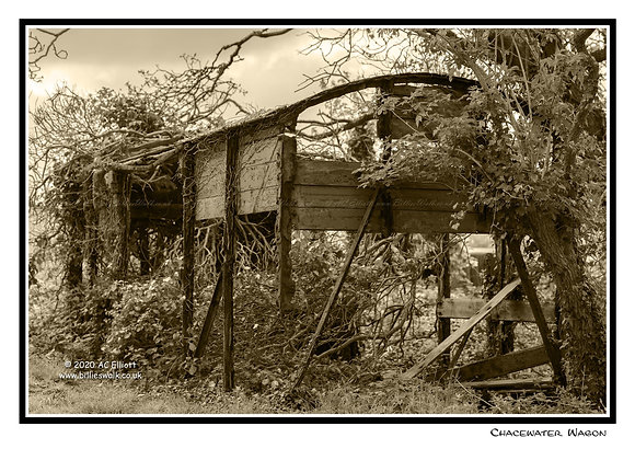 Chacewater delapidated wagon Greeting Card