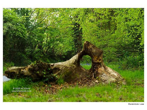 Respryn log