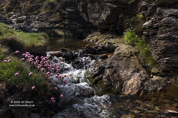 Trevellas Cove stream