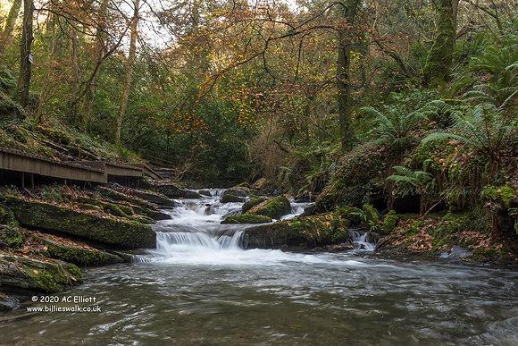 River Trevillet 2