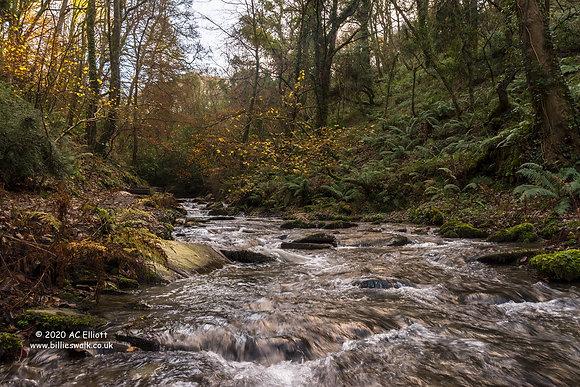 River Trevillet 1