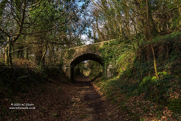 Luxulyan Valley Incline
