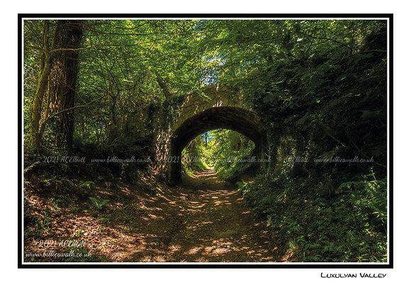 Luxulyan Valley woodland Greeting Card