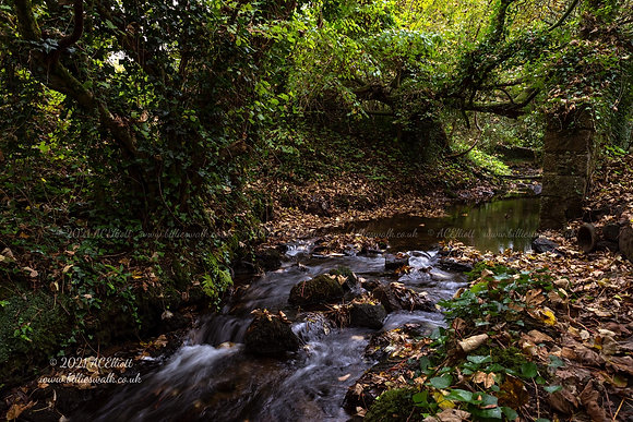 A small river flowing through woodland at Glasney Valley photo and fine art print