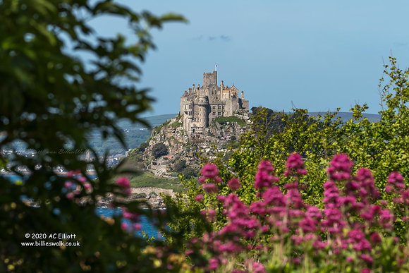 St Michael's Mount framed behind foliage and pink flowers photo and fine art print