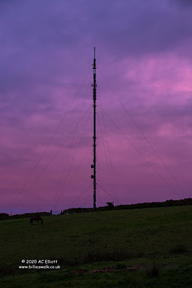 The Nearly Home Mast