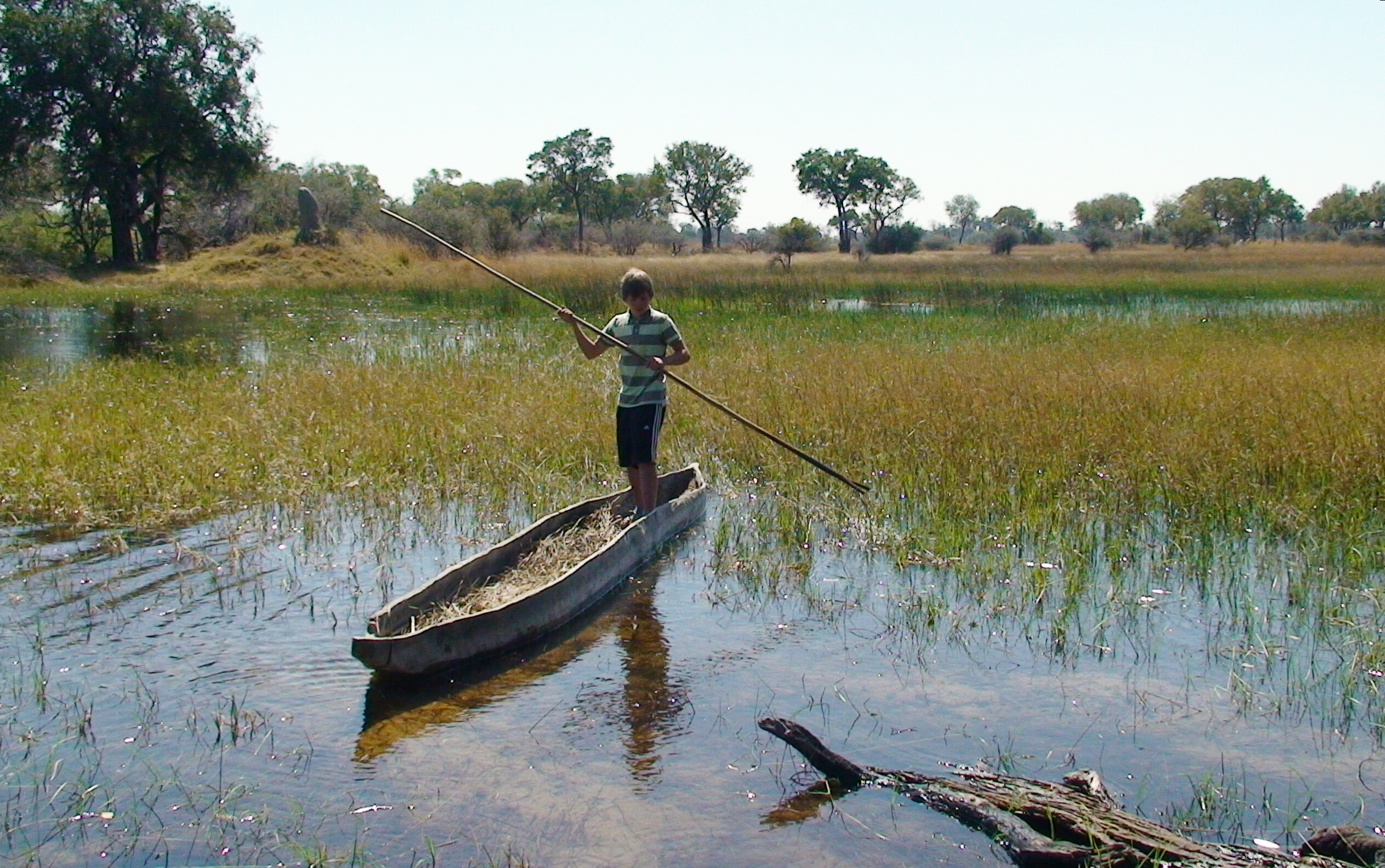 Okavango Delta - Botswana.JPG