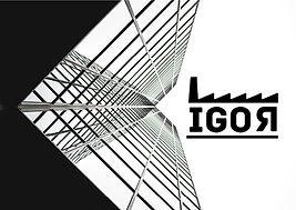 IGOR_logo.jpg