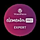 wordpress elementor expert