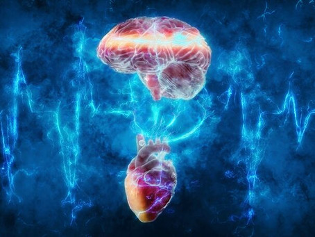 The Human Electromagnetic Field and the Heart-Brain Connection