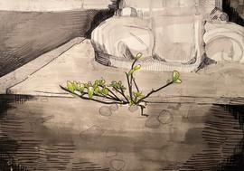 McKenna Jordan  100,000 Square Feet Ink on paper  14inx16in Core Drawing Peter Abrami