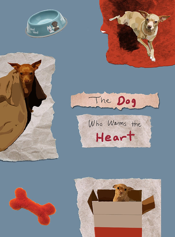 The Dog Who Warms The Heart Page 1.jpg