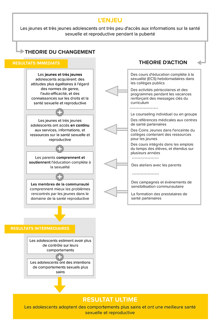 Theory of change french (1).png