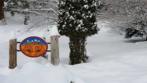 Snowy Day at Fox Den