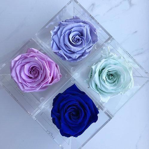 Colour Gradient 3