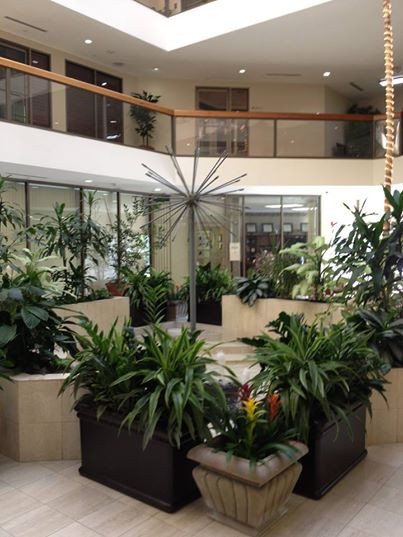 Office Courtyard