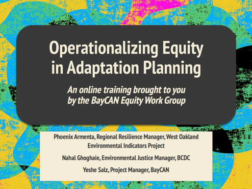 Equitable Adaptation Training
