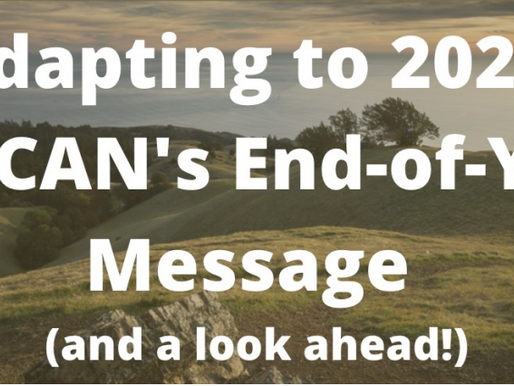 Adapting to 2020: BayCAN End-of-Year Reflection