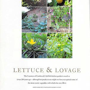 Lady Cranbook's Garden