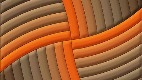 3D Orange Shaggy