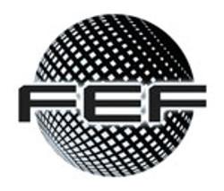 foundation-for-economic-freedom-logo