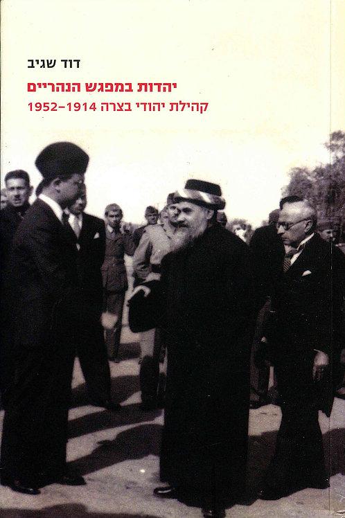 Yahadut be'Mifgash ha'Naharayim/ David Sagiv