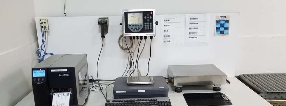 Counting Scale System