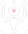 bunny_logo_tp_white.png