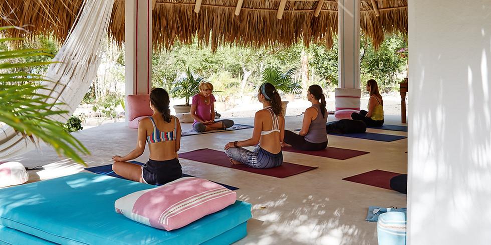 November 2020 - Yoga & Meditation Retreat